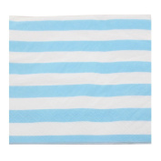 Youmewell Blue Party Napkins,Striped Paper Napkins,3-Ply,100 Count