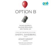Option B [Audio]