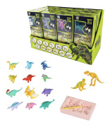 12 Pack Dinosaurs Assortment Skeleton 3D Dino Fossil Excavation Science Kits for Party Favours