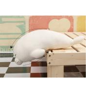 Wukong 60cm Sea Lion Plush Stuffed Animal Toy