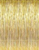 GOER 1m x 3m Metallic Tinsel Foil Fringe Curtains for Party Photo Backdrop Wedding Decor (Gold,1 pack) by GOER