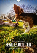 Beagles in Action 2017