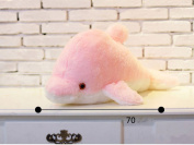 JYSPORT LED Light Dolphin Soft Plush Toys Glowing Cushion Relax Mood Colour Changing Thrown Pillow