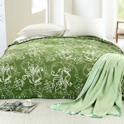 BDUK Bamboo Fibre Blankets Towels Are Blanket Blankets Spring Summer Air-Conditioning And Double Click