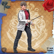 Harry Potter 30cm Action Figure Series one Harry Potter FIGURES TOY CO