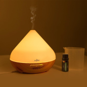 Anjou 300ml Aromatherapy Essential Oil Diffuser, Ultrasonic Aroma Humidifier (Up to 8H Use, Mist Control, Waterless Auto Shut-Off, 4 Timer Settings, 7 Colour LED Lights ) - Light Grain