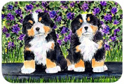 """Caroline's Treasures SS8334CMT """"Bernese Mountain Dog"""" Kitchen or Bath Mat, 20"""" by 30"""", Multicolor"""