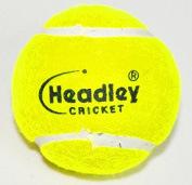 Headley Cricket Ball Heavy Tennis Balls