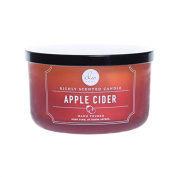 DW Home Decoware Richly Scented Apple Cider Candle Large Double wick 440ml