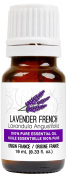 Lavender Essential Oil (French) 10 ml (0.33 fl. oz.) - GCMS Tested, 100% Pure, Undiluted and Therapeutic Grade