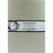 Fundamentals Cardmaking Unscored Cardstock 15cm x 21cm 20/Pk-Silver