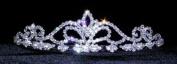 #13560 Fleur De Lis Swirl Tiara