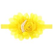 Alonea Baby Kids Girls Flower Hairband Elastic Headband