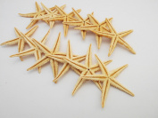"12 Extra Large Size Starfish - Philippine Tan Flat Sea Stars (3"" - 4"" / 75-100 mm) Beach Crafts Wedding Invitations"