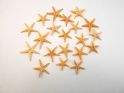 "100 Small Starfish - Philippine Tan Flat Sea Stars (1"" - 1 1/2"" / 25-35 mm)) Beach Crafts Wedding Invitations"