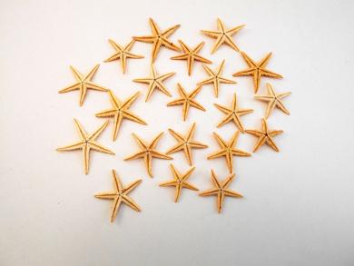 """100 Small Starfish - Philippine Tan Flat Sea Stars (1"""" - 1 1/2"""" / 25-35 mm)) Beach Crafts Wedding Invitations"""