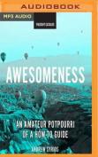 Awesomeness [Audio]