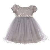 Baby Girls Silver Sequin Stone Lace Short Sleeve Flower Girl Dress 6-24M