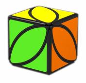 D-FantiX QiYi MoFangGe Lvy Cube FengYe Skewb Shape Puzzles Black with Cube Stand