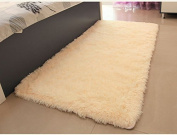 ACTCUT Super Soft Solid Carpet/Floor Rug/ Living room carpet/Area Rug Size