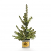 Holly Ridge Spruce Tree 70cm 50T Metal Pot