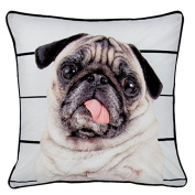 Catherine Lansfield Home Pug Life Piped Edge Cushion Cover, Multi, 43 x 43 Cm
