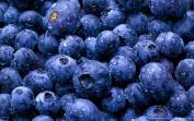 TFA Flavour Concentrates - 30ml - Blueberry Flavour