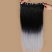 HANNE Clip in Hair Extensions Ombre Colour Easy to Fix Synthetic Clip Hair Coloured Hair Extensions