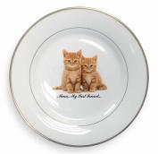Kittens 'Mum My Best Friend' Gold Leaf Rim Plate n Gift Box