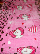 Kitty Cat In Hearts Pink Borrego Sherpa Plush Soft Mink Baby Child Blanket Throw