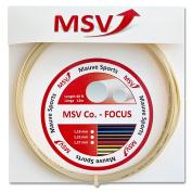 MSV Strings CO Focus