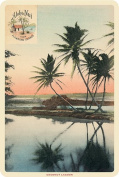Hawaiian Vintage Postcards Pack of 30 - Aloha Nui Postcard