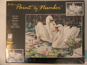Janlynn Paint by Number: Swans