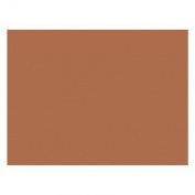 * CONSTRUCTION PAPER BROWN 9X12 - PAC6703