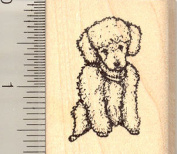 Toy Poodle Rubber Stamp, Small