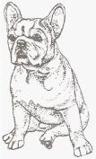 Dog Rubber Stamp - French Bulldog-1E (Size