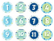 Pearhead First Year Monthly Milestone Photo Sharing Belly Stickers, Months 1-12 Included, Blue by Pearhead