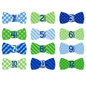 Tiny Ideas Monthly Milestone Stickers, Bowtie by Tiny Ideas