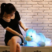 YunNasi 70cm Supper Cute Sea animal Little Stuffed Toys - Sparkling lion plushies with LED Light