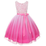 Kids Dream Fuchsia Ombre Rosette Special Occasion Dress Toddler Girl 2T-4 by Kids Dream