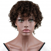 Dreambeauty Human Hair Wigs for Black Women Short Fashion Curly Wigs African Amercian Wigs