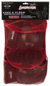 Birdhouse Adult Knee/Elbow Pad Set (Black), Model