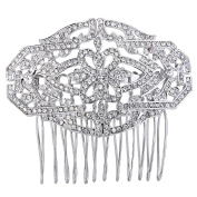 EVER FAITH Women's Austrian Crystal 1920s Style Flower Knot Wedding Hair Side Comb Clear