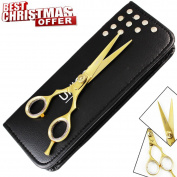Xmas GIFT ! 14cm Golden Razor Edge Stainless Steel Hairdressers Scissors,Barber Hair Cutting Scissors/Shears with Adjustable Screw ,Razor Sharp Perfect for Salons & Home Use