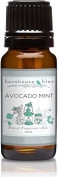 Barnhouse - 10ml - Avocado Mint - Premium Grade Frageance Oil by Barnhouse Blue