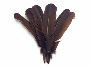 Moonlight Feather, Turkey Feathers - Brown Turkey Rounds Quill Feathers (Bulk) - 0.1kg