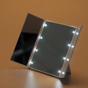 8 LED Illuminated Make Up Mirror Battery Powered Foldable Portable Vanity H88
