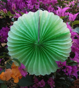 Quasimoon 30cm Light Lime Tissue Paper Flower Rosette Fan Decoration (6 Pack) by PaperLanternStore