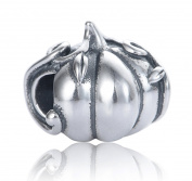 "Best Wing Jewellery .925 Sterling Silver ""Pumpkin"" Charm Bead"