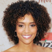Futuretrend Kinky Curly Afro Wig Cheep Female Wig Brown Kinky Curly Short Wigs for Black Women Heat Resistant African Hair Wigs